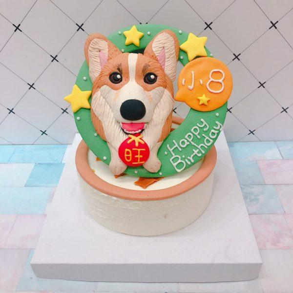 客製化寵物蛋糕宅配蛋糕推薦,超可愛科基狗狗造型蛋糕