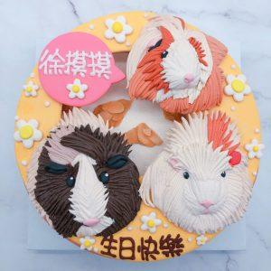 台北寵物生日蛋糕推薦