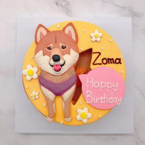 超可愛柴犬造型蛋糕,寵物生日蛋糕宅配