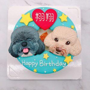 貴賓狗造型蛋糕推薦,寵物生日蛋糕宅配