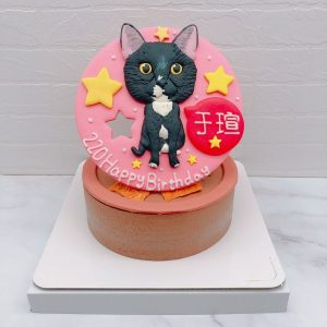 貓咪造型蛋糕推薦,寵物客製化蛋糕宅配