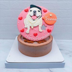 台北寵物造型蛋糕推薦,客製化法鬥生日蛋糕宅配