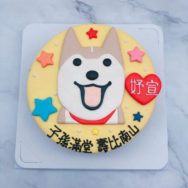 Q版柴犬生日蛋糕推薦,寵物造型蛋糕宅配分享