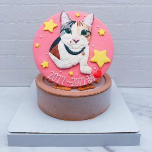 貓咪造型蛋糕推薦,客製化寵物生日蛋糕宅配
