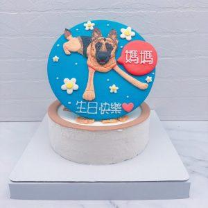 狗狗客製化生日蛋糕推薦,寵物造型蛋糕宅配分享