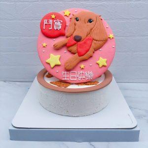 臘腸狗造型蛋糕推薦,客製化寵物生日蛋糕宅配分享