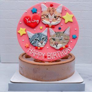 寵物造型蛋糕推薦,三隻貓咪生日蛋糕宅配分享